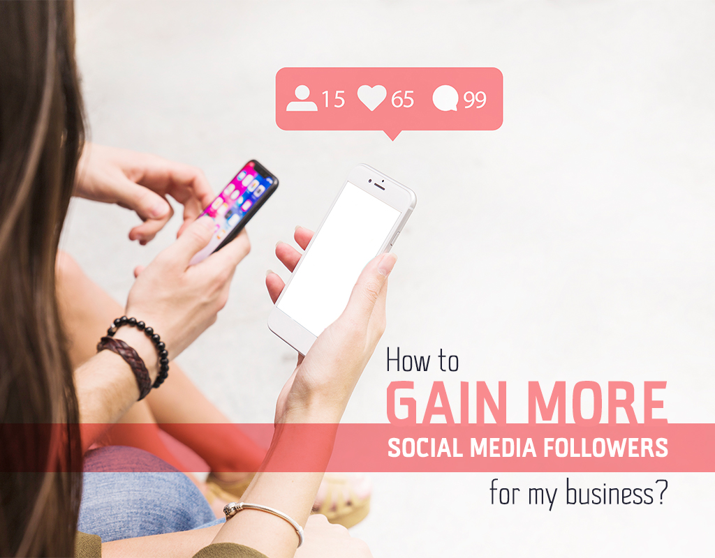 How to gain more social media followers for my business?